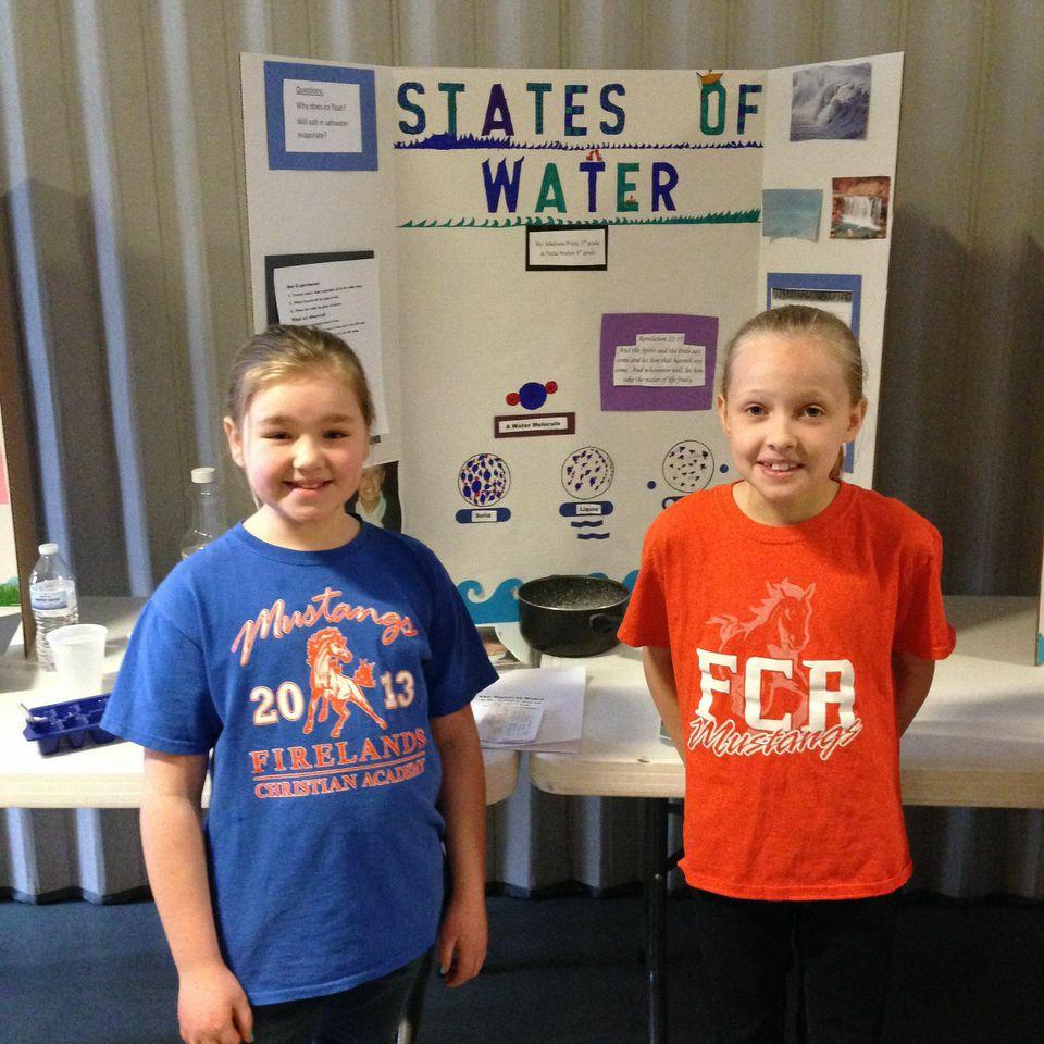 Science Fair - March 17